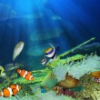 Tropical Fish — Stockfoto #10567413
