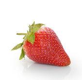 Close up strawberries — Stock Photo