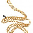 Golden chain — Stock Photo #10506127