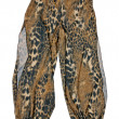 Stock Photo: Leopard trousers