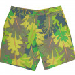 Stock Photo: Summer shorts