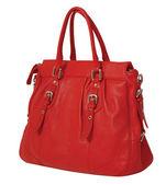 Women bag — Stock Photo
