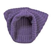 Cachecol violeta — Foto Stock