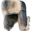 Stock Photo: Fur cap