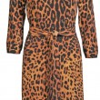 Stock Photo: Leopard gown