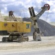 Walking excavator — Stock Photo