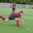 Regional hockey tournament for men unleashed. - 图库照片
