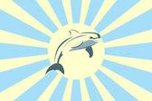 Dolphin and the Sun — Stock Vector
