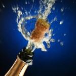 Champagne bottle ready for celebration — Stock Photo #10210663