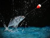 Catching a big fish at night — Stock Photo