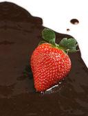 Erdbeere in Schokoladensauce — Stockfoto