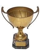 Trofeo d'oro — Foto Stock