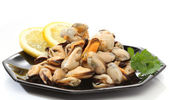 Pile of raw mussels over white — Stock Photo