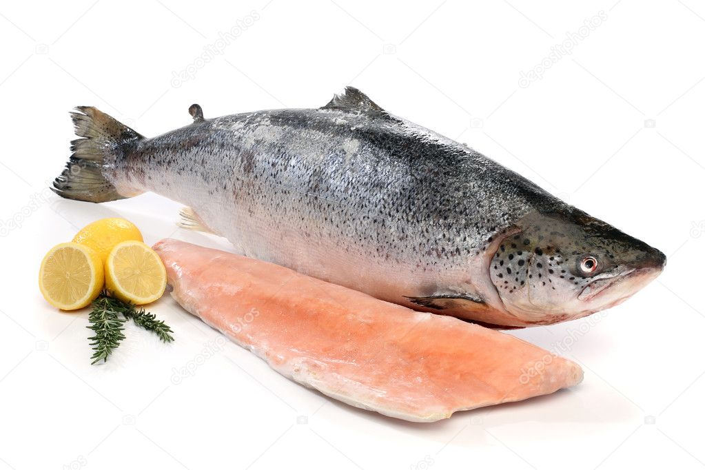 Big salmon fish and a fillet isolated on white — Stock Photo #10613537