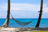 View of nice tropical empty sand beach with some palm and hammock — Stock Photo