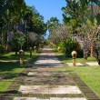 Walking track in a tropical garden - Stock Photo