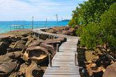 Wood walk way to sea . Island Koh Kood, Thailand . — Stock Photo