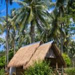 Tropical beach house — Stock Photo #10652379