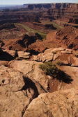 Dead Horse Point in full sunshine — Stock Photo