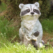 Stock Photo: Raccoon Figurine