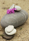Meditation stones — Stock Photo