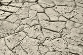 Gray soil — Stock Photo