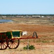 Alentejo Wagon — Stock Photo