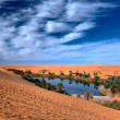Oasi desert — Stock Photo