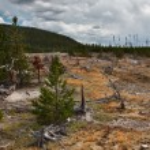 Yellowstone — Stock Photo #10447284
