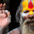 Indian Guru - Stock Photo