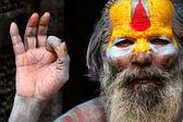 Indian Guru — Stock Photo
