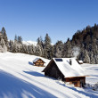 Idyllic winter landscape in the alps — Stock Photo