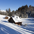 Idyllic winter landscape in alps — Stock Photo #10487438