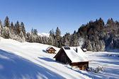 Idyllic winter landscape in the alps — Stock Photo