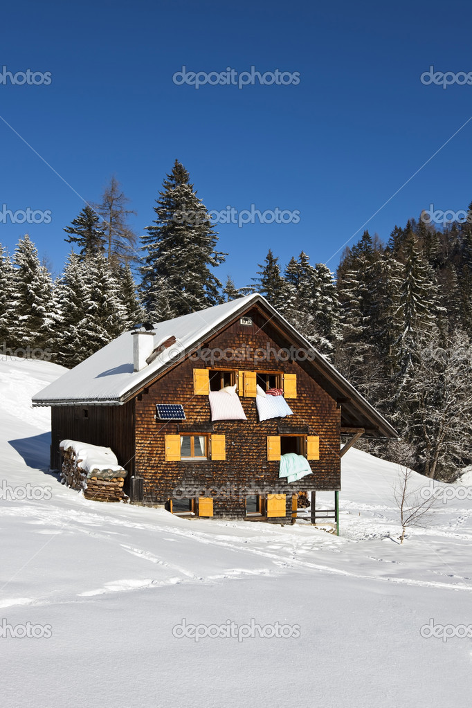 Very detailed XXXL photo of a rural sunny winter landscape with occupied chalet. — Stock Photo #10487424
