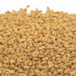 Stock Photo: Pile of fenugreek seeds