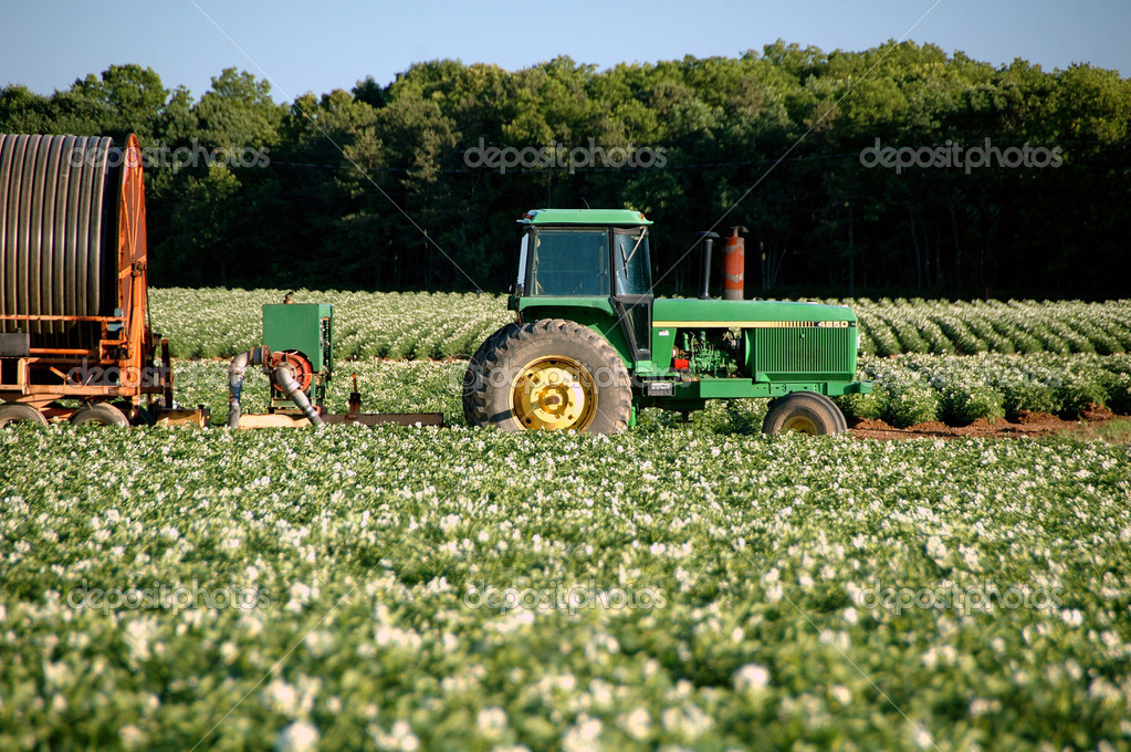 Tractor irrigating crops  Stock Photo #10562041