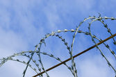 Barbed wire against the blue sky — Stock Photo