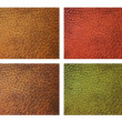 Leather in four colors — Stock Photo
