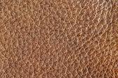 Brown leather grain — Stock Photo