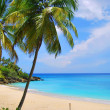 Island in Caribbean — Stock Photo #10343555