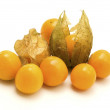 Physalis — Stock Photo #10284447