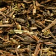 Darjeeling tea — Stock Photo #10293506