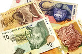 South African Rand — Stock Photo