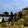 Paro's Dzong — Stock Photo #10313523
