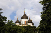The onion-shaped cupolas of the Russian Orthodox Cathedral Alexa — Stock Photo