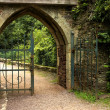 Old gate — Stock Photo #10322469