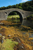 Seil Bridge — Stock Photo