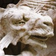 Dragon Sculpture head — Stock Photo