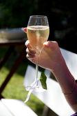 Cheers! — Photo